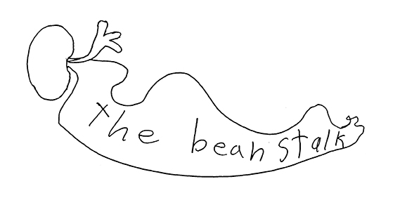 Megan Muther's Logo Design